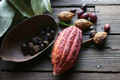 Kakaobohne und Muskatnüsse (Grenada)